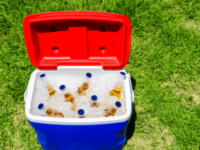 best ice packs for coolers